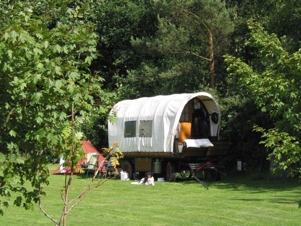 kampeerterrein_de_blauwe_haan_drenthe02
