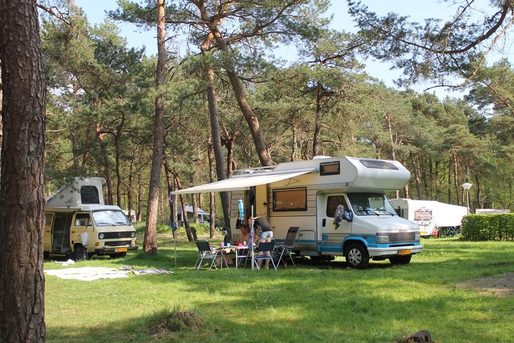 boscamping_langeloerduinen_norg_drenthe009