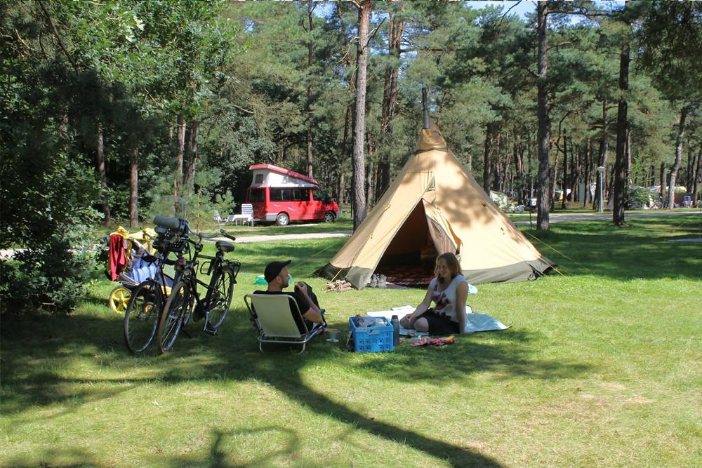 boscamping_langeloerduinen_norg_drenthe014