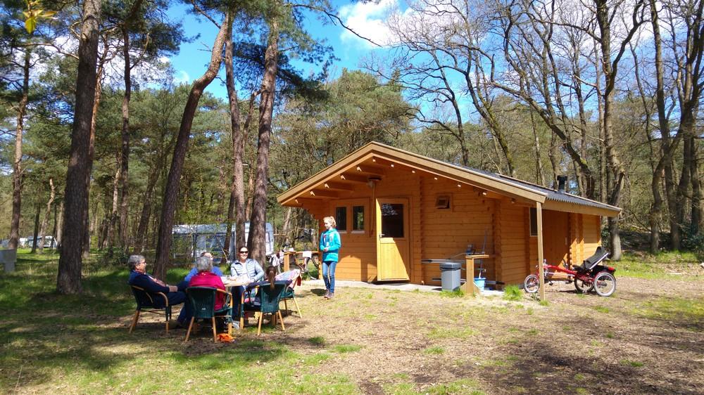 drenthe_campings_boscamping_langeloerduinen01
