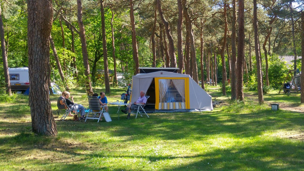 drenthe_campings_boscamping_langeloerduinen05