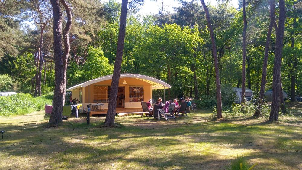 drenthe_campings_boscamping_langeloerduinen06