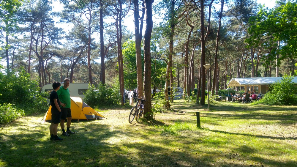 drenthe_campings_boscamping_langeloerduinen08