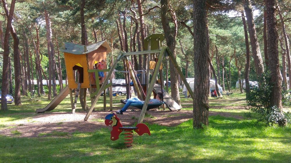 drenthe_campings_boscamping_langeloerduinen10