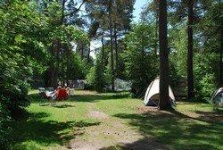 camping diever drenthe02