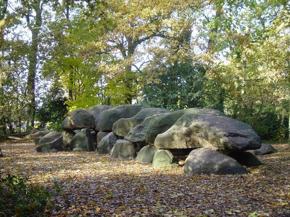 Vakantiepark_Diana_Heide_Drenthe11