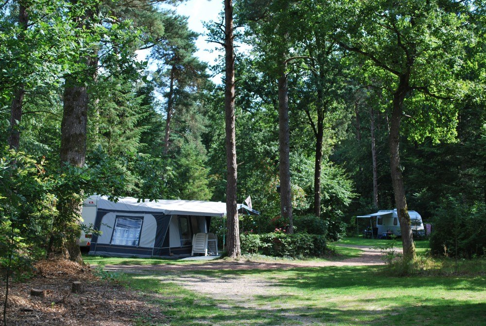 camping_diever_drenthe06