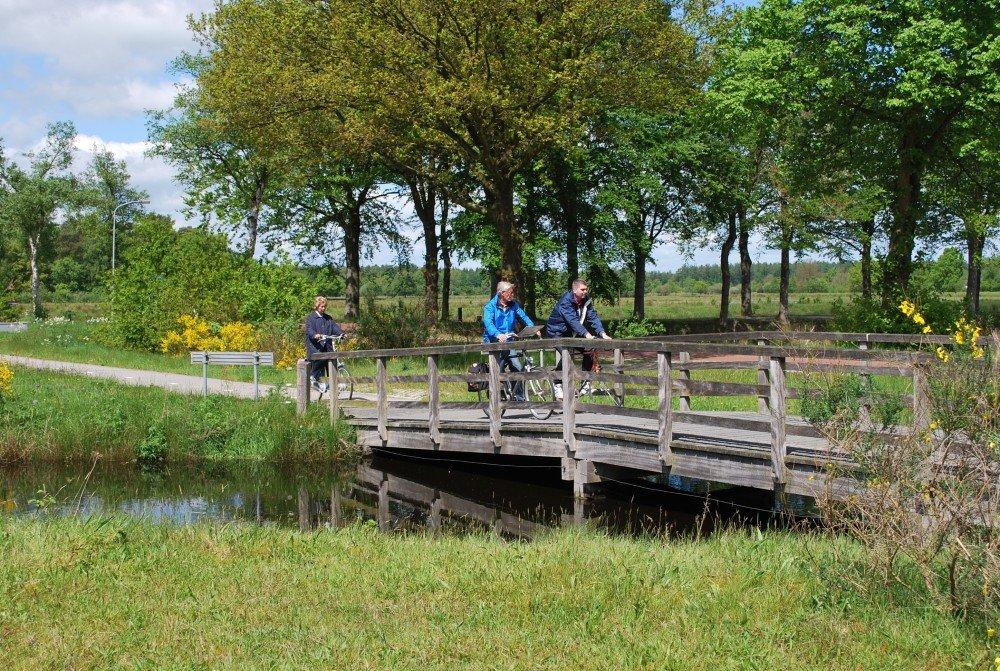 wandelen_fietsen_drenthe_camping_diever03