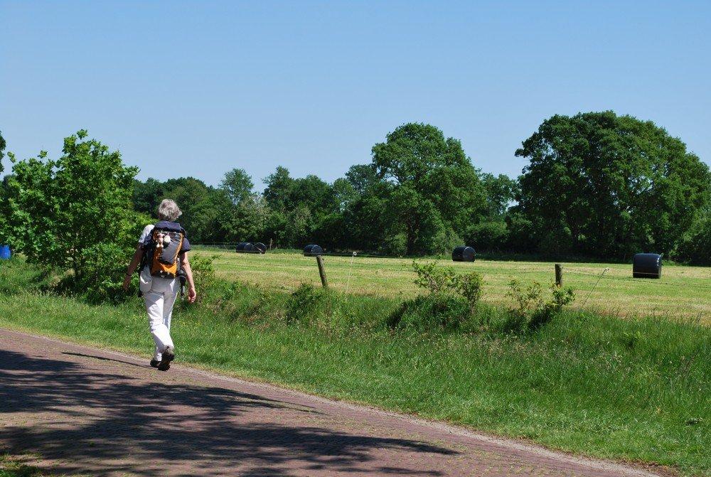 wandelen_fietsen_drenthe_camping_diever10