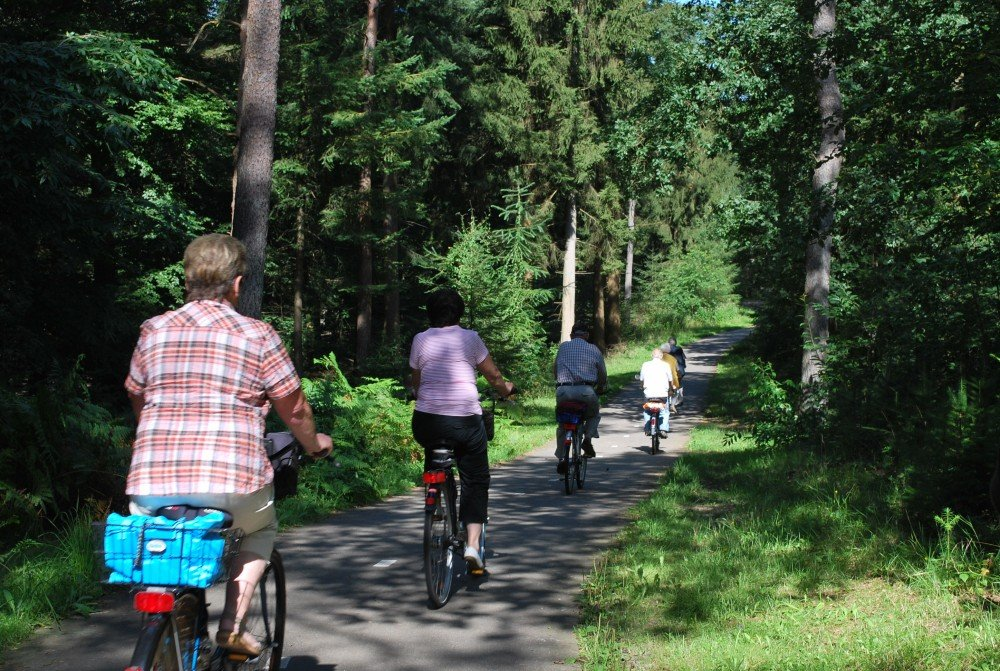 wandelen_fietsen_drenthe_camping_diever16