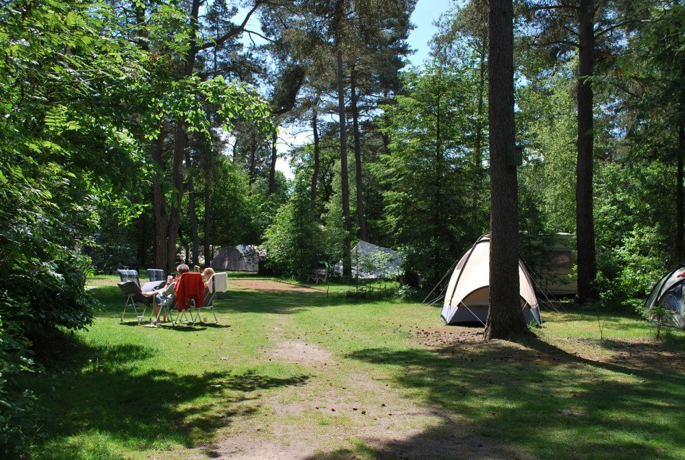 camping_diever_drenthe02