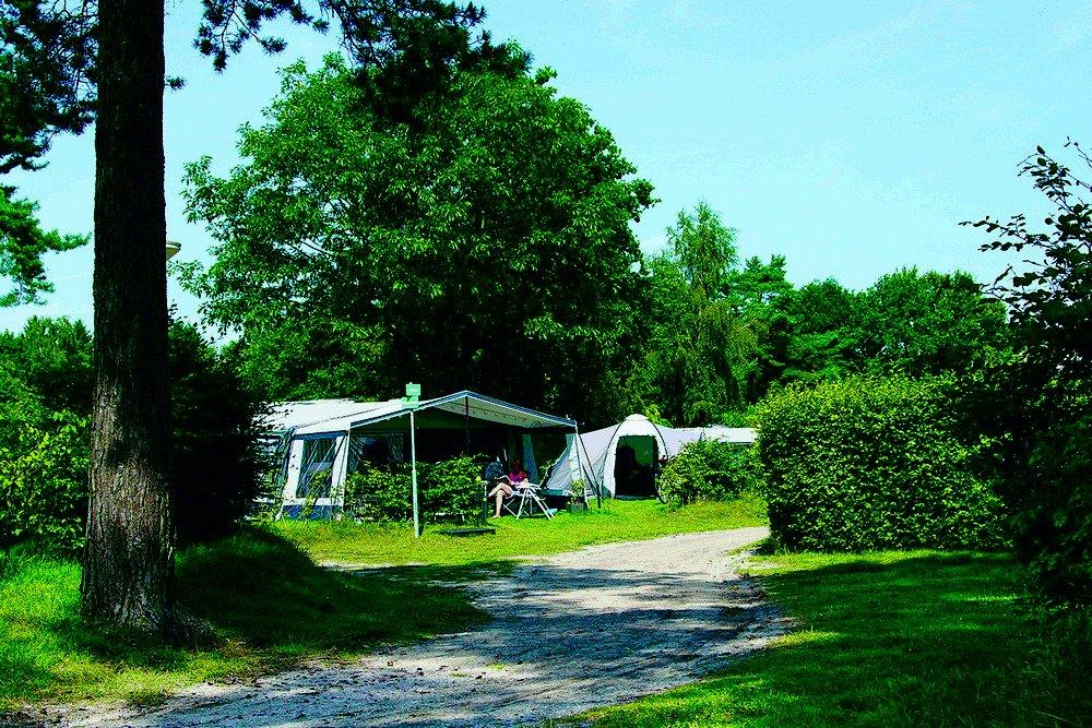 camping_de_hondsrug_drenthe_01