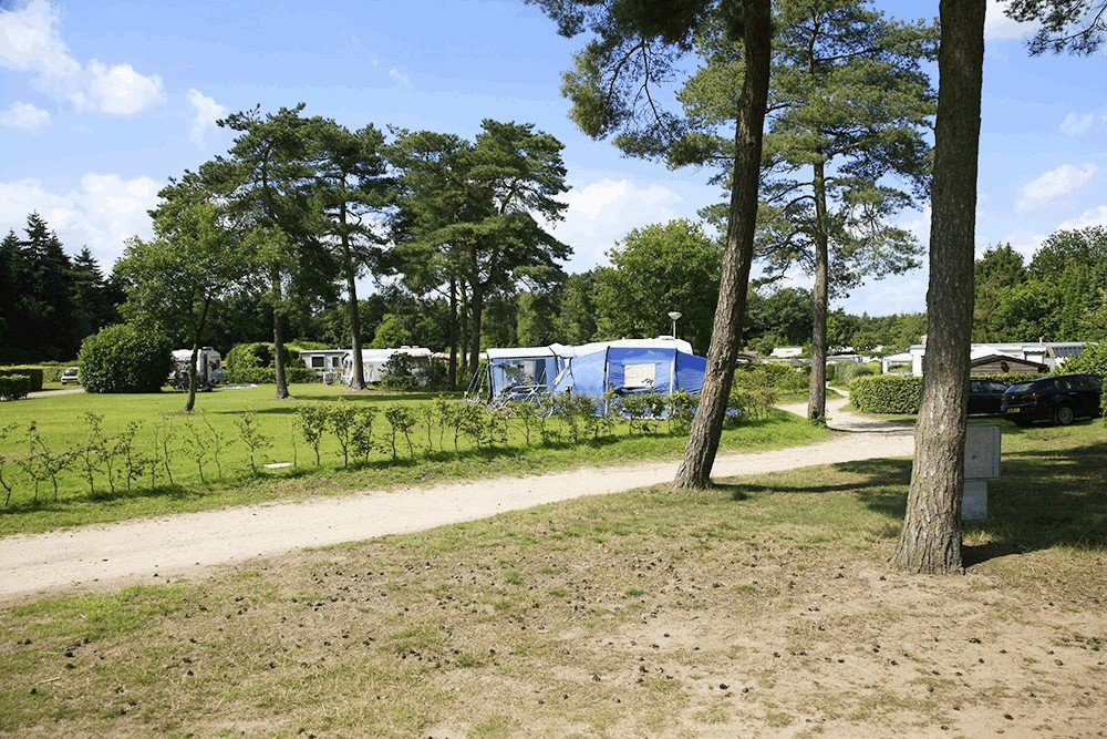 camping_de_hondsrug_drenthe_09