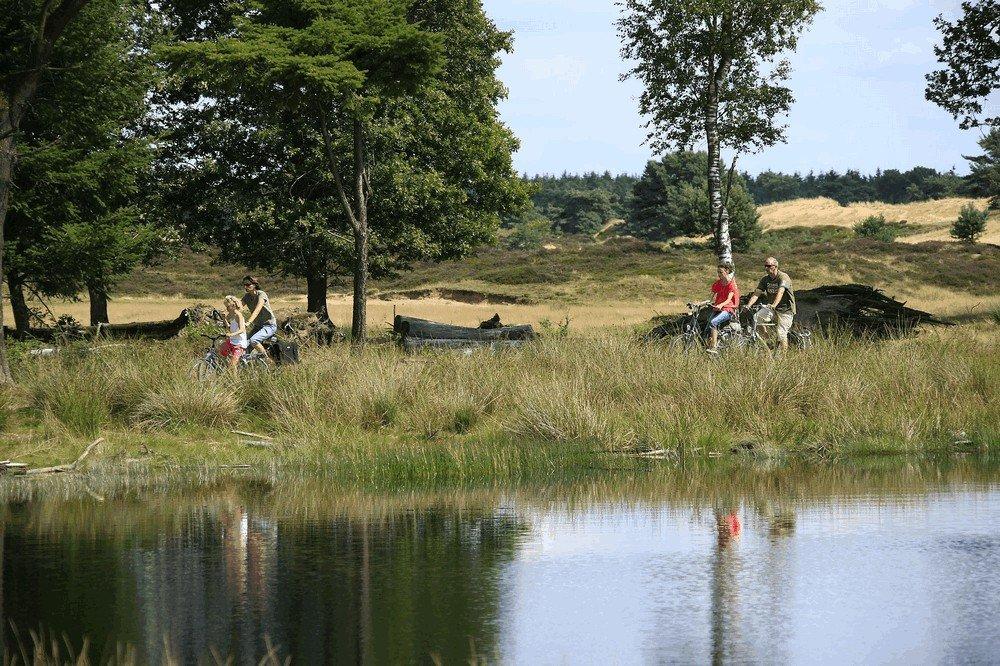 camping_de_hondsrug_drenthe_10