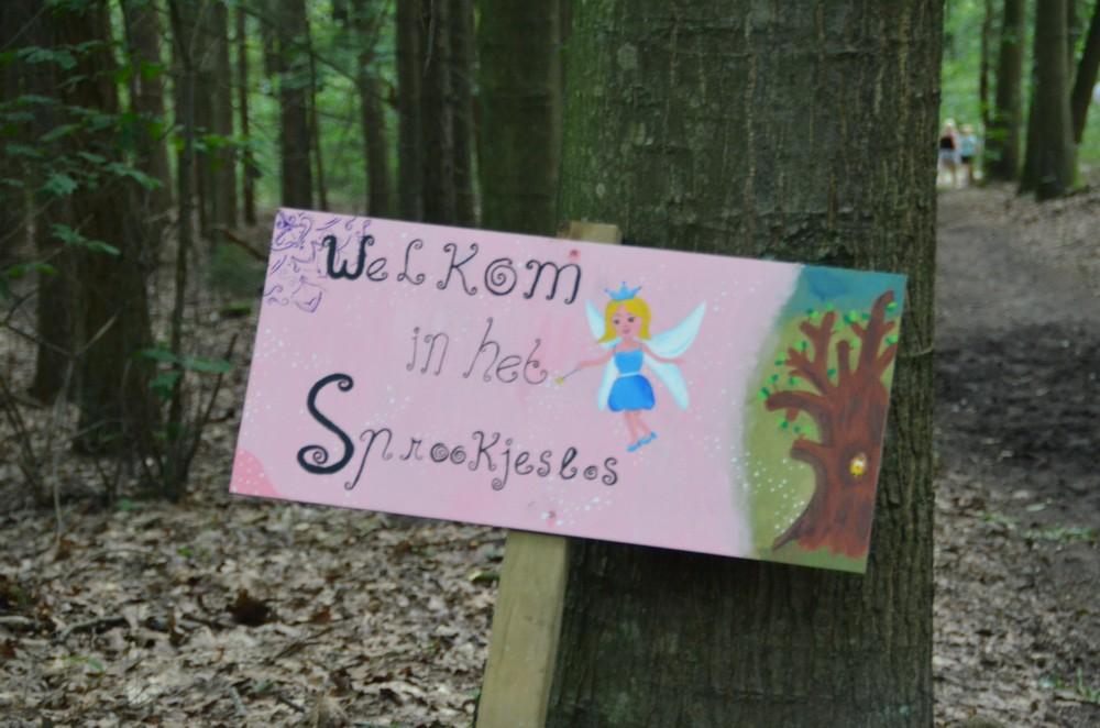 drenthe_campings_lente_van_drenthe19