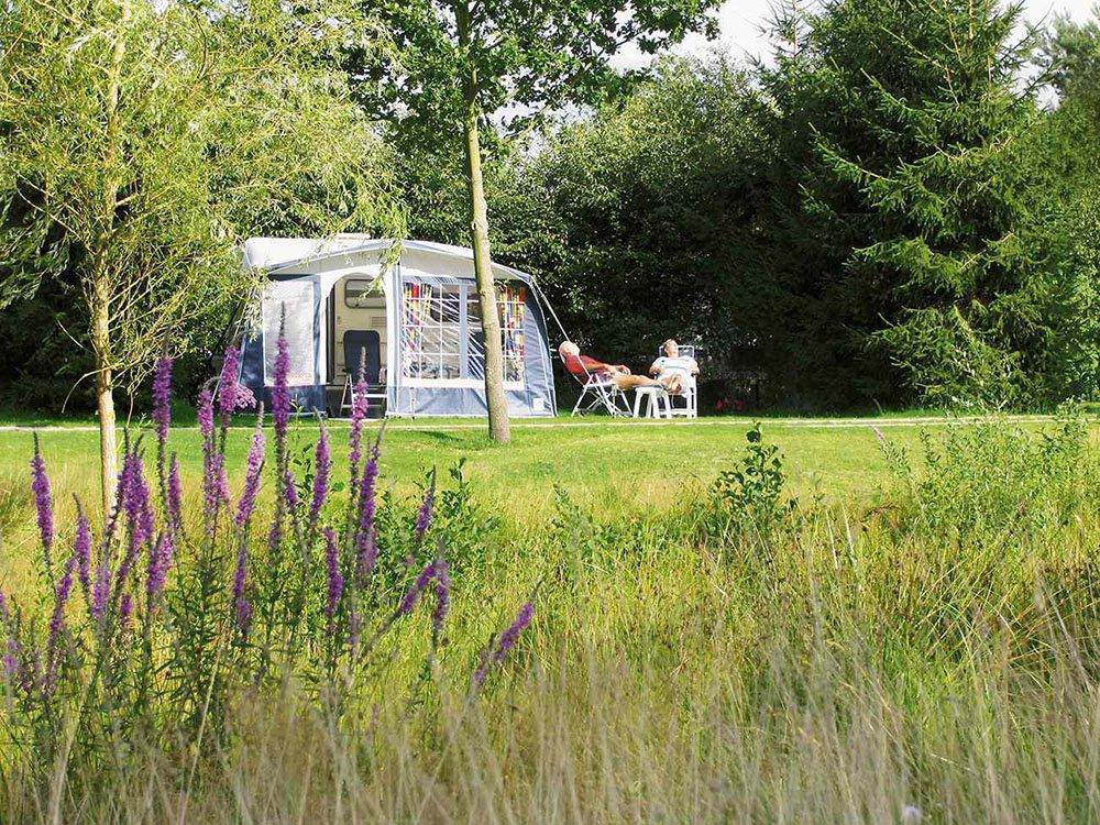 camping_meistershof_drenthe04