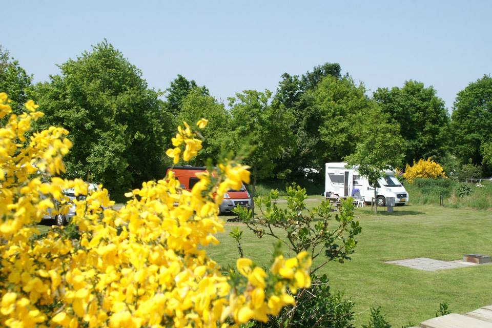 camping_meistershof_drenthe07