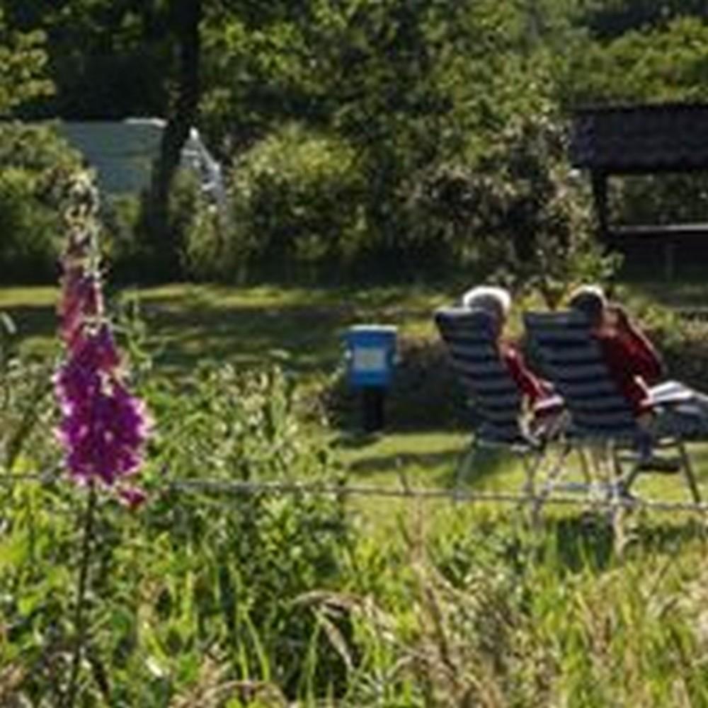 drenthe_campings_meistershof17