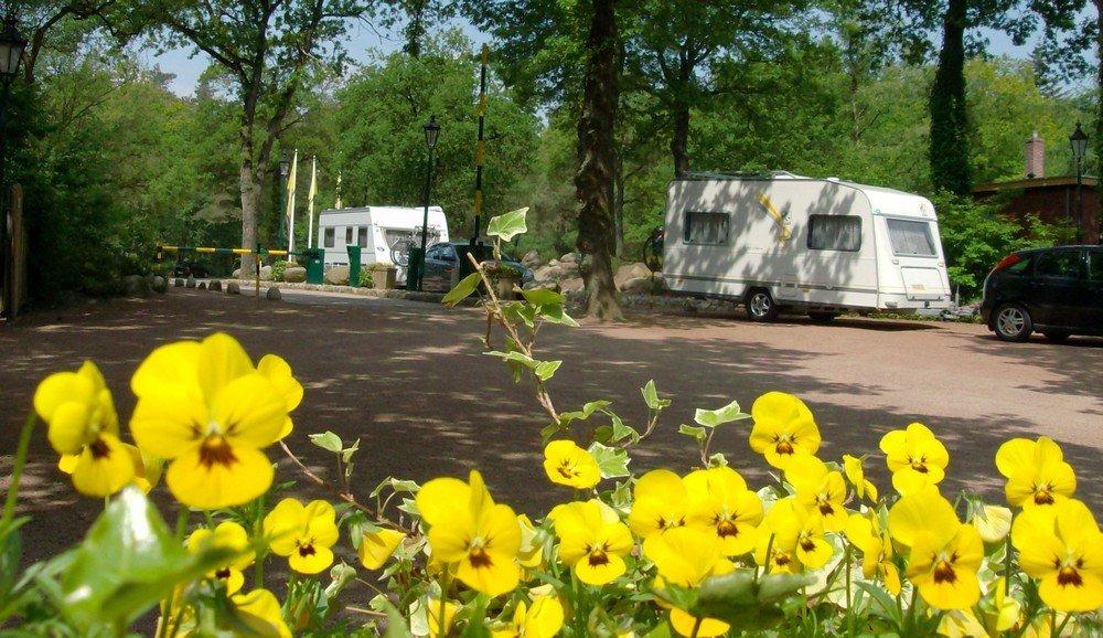 camping_norgerberg_drenthe11