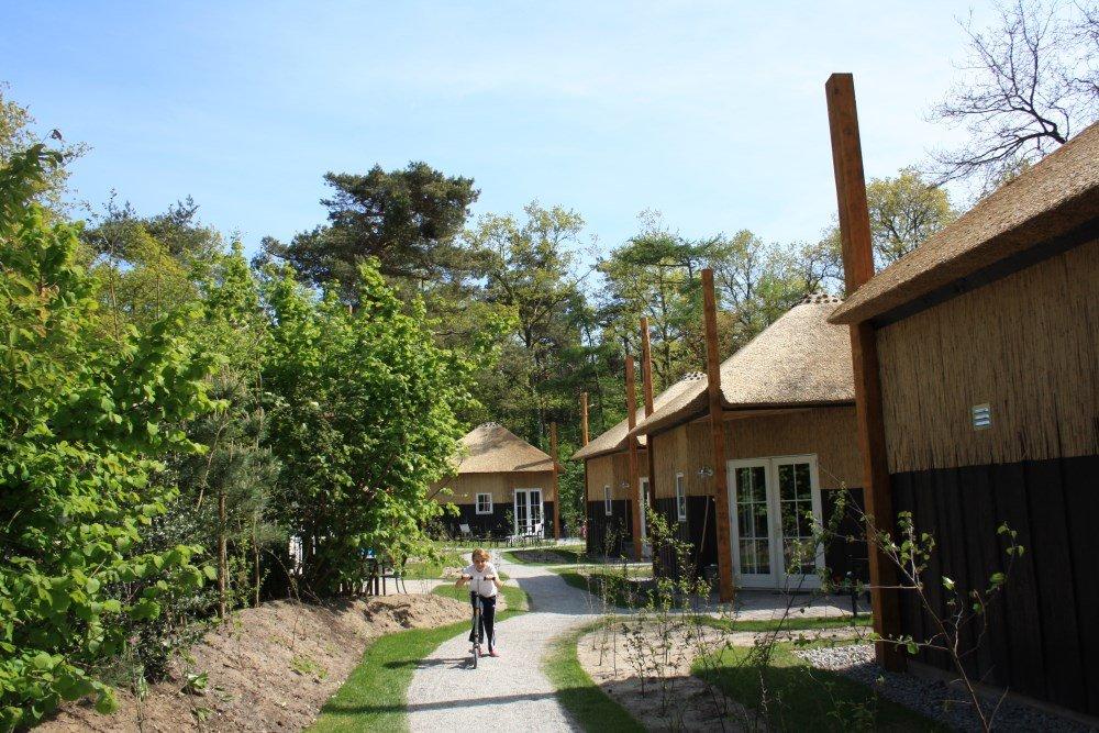 camping_norgerberg_drenthe16