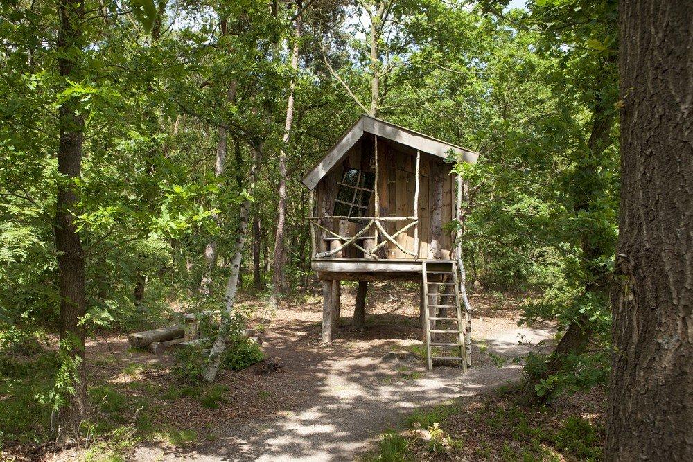 camping_norgerberg_drenthe04