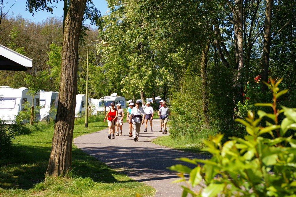 camping_de_reeenwissel_in_drenthe016