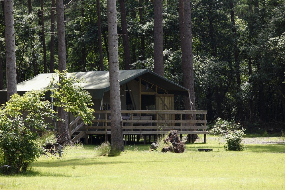 camping_torentjeshoek_drenthe010