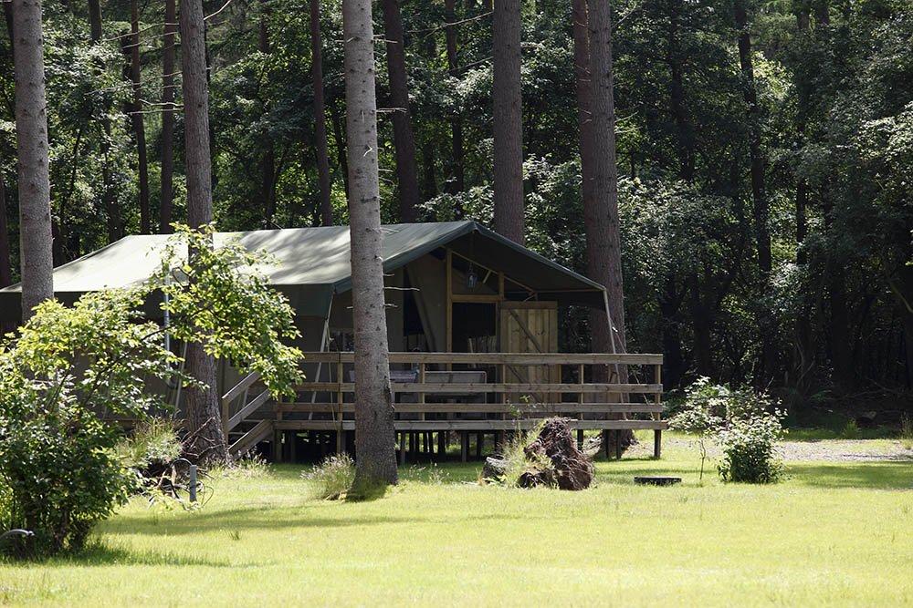 camping_torentjeshoek_drenthe_impressie001