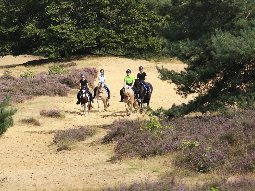Ponyrijden 1 uitsnede