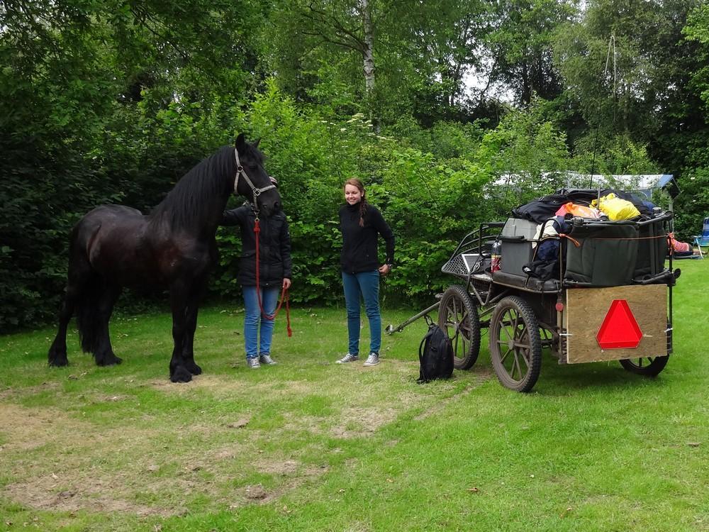 Paard-en-wagen