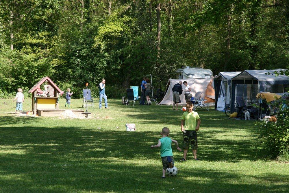 camping_zwanemeer_drenthe13