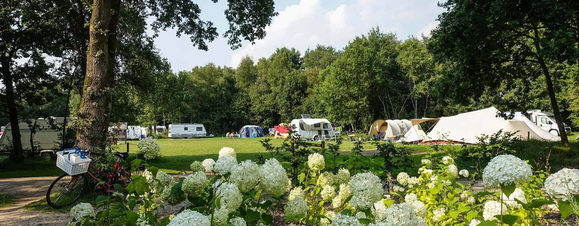landclub-ruinen-kamperen-op-onze-camping-in-drenthe