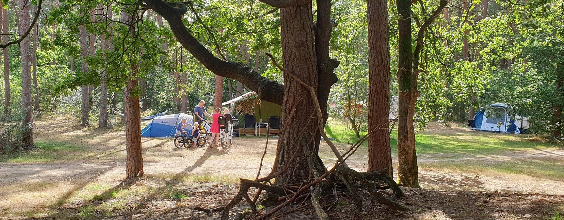 langeloerduinen-boscamping-in-drenthe