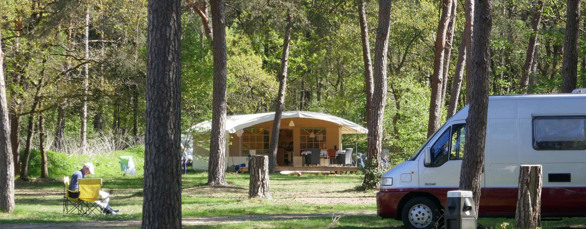 langeloerduinen-lodgetent-in-het-bos-huren