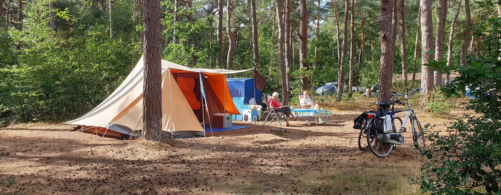 langeloerduinen-ontspannen-in-het-bos-op-onze-camping