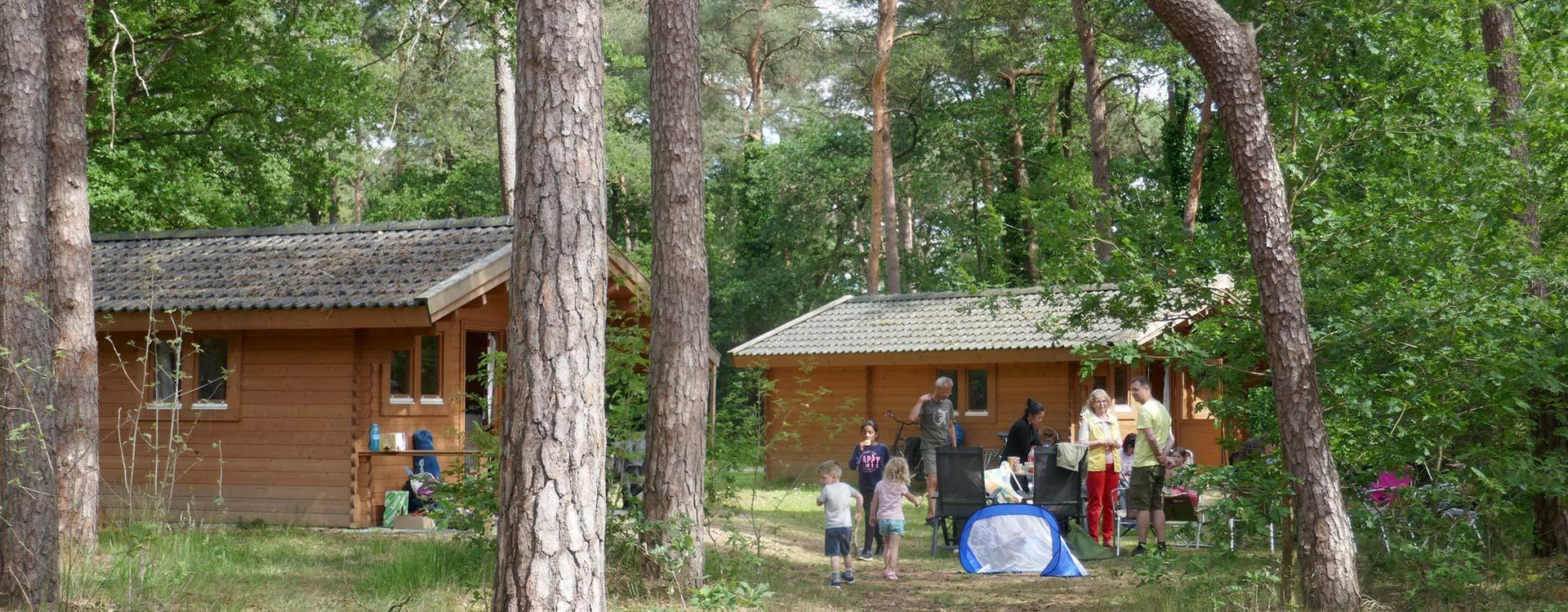 langeloerduinen-trekkershut-huren-in-het-bos-in-drenthe