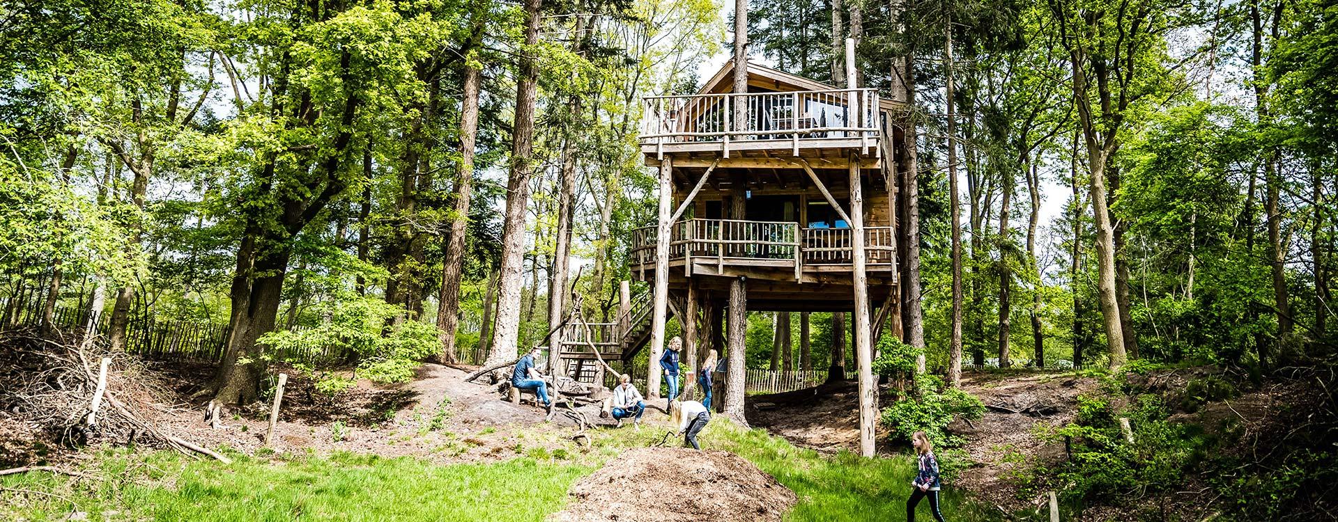 unieke-treehouse-en-boomhut-xxl-huren-in-drenthe-bij-camping-torentjeshoek